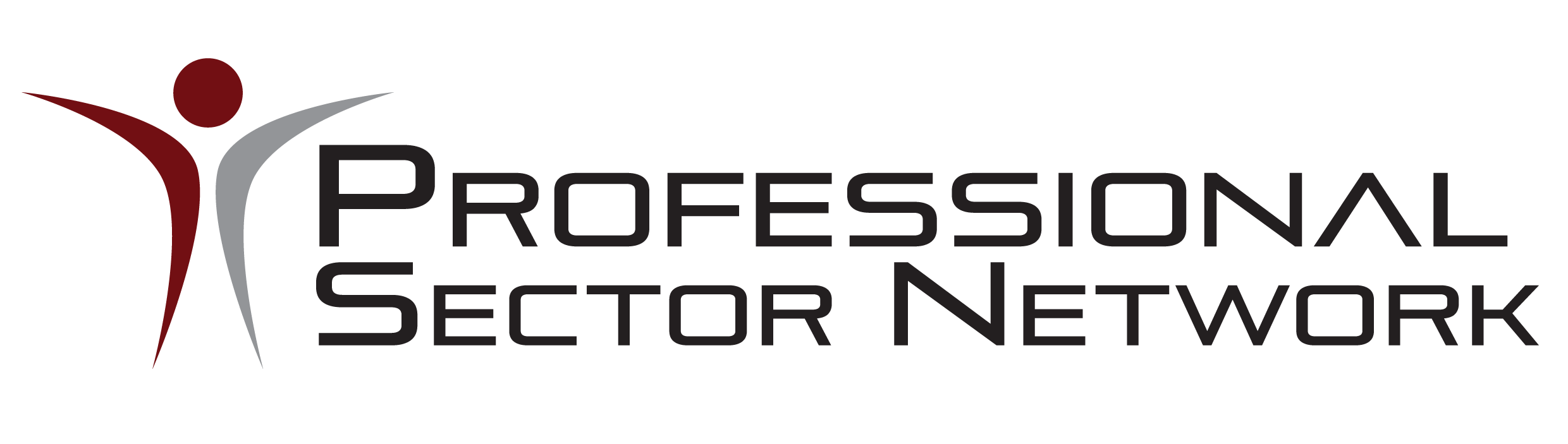 Professional Sector Network